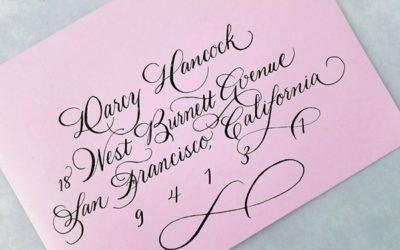 New Calligraphy  Script